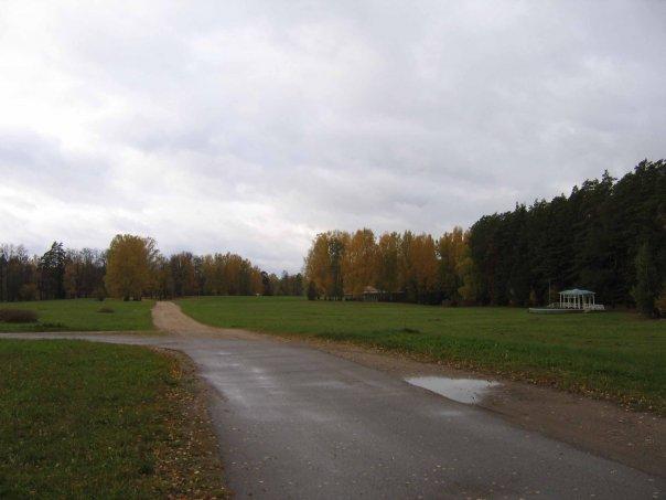 Ищу лошадь в аренду с вашим тренером СПб | Prokoni ru